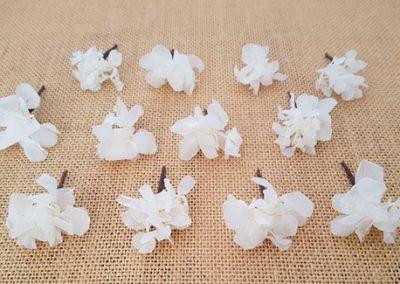 Flores sueltas hortensia