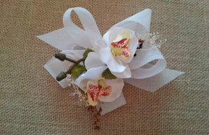 Prendido orquídeas