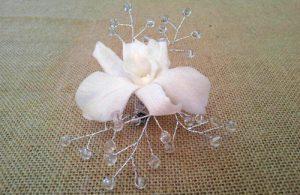 prendido orquídea dendro con cristales