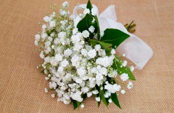 Ramo paniculata blanca