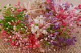 Pulsera tobillera flores secas granate