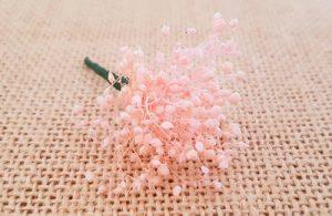 Flores secas rosa empolvado